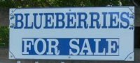 blueberry-farm-sign-small